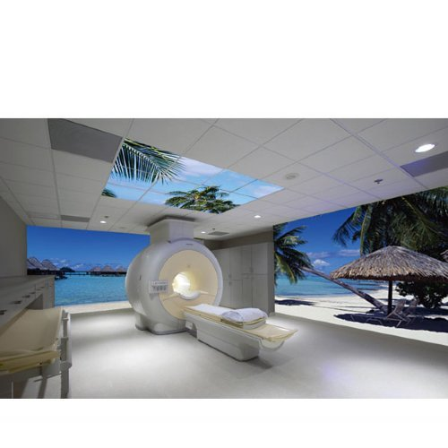 Ceiling Tile Art And Decorative Wall Murals